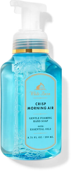 Crisp Morning Air Gentle Foaming Hand Soap