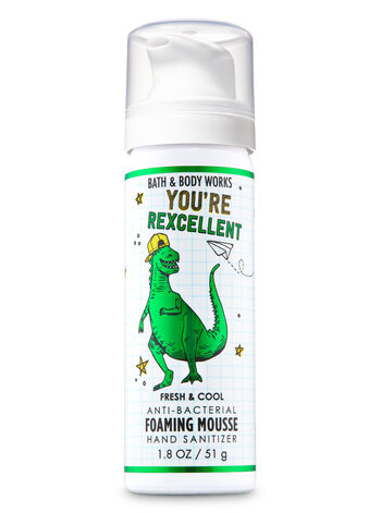 Fresh & Cool Foaming Hand Sanitizer - Bath And Body Works