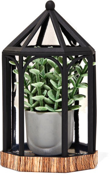 Succulent Terrarium Wallflowers Fragrance Plug