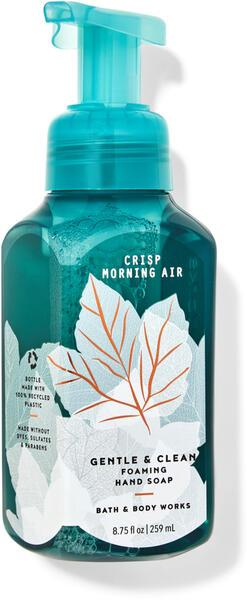 Crisp Morning Air Gentle & Clean Foaming Hand Soap