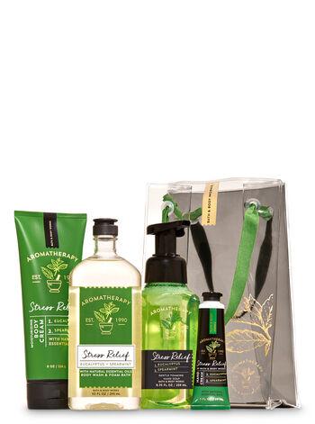 Eucalyptus Spearmint Gift Bag Set - Bath And Body Works