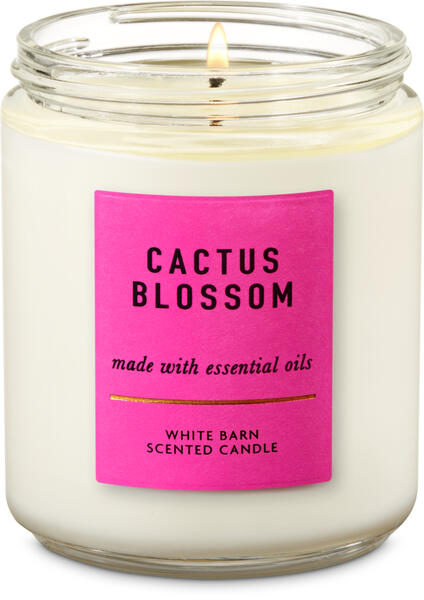 Cactus Blossom Single Wick Candle