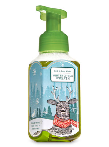 Winter Citrus Wreath Gentle Foaming Hand Soap - Bath And Body Works