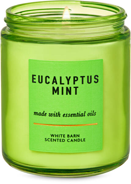 Eucalyptus Mint Single Wick Candle