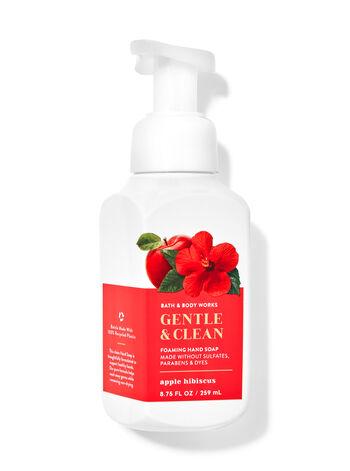 Apple Hibiscus Gentle Foaming Hand Soap