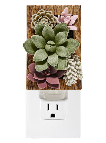 Succulent Frame Wallflowers Fragrance Plug
