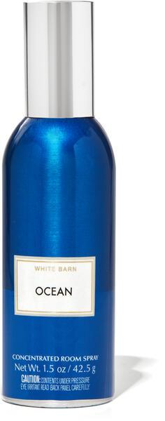 Ocean Concentrated Room Spray
