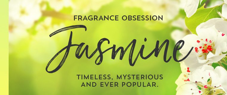 Fragrance obsession. Jasmine. Timeless, mysterious and ever popular.